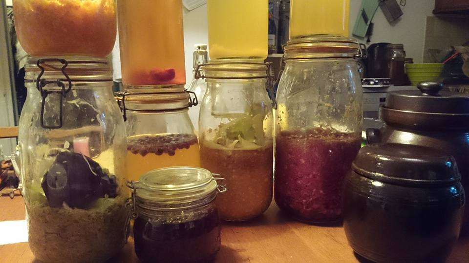 Fermentation Community Class -  Fully Booked